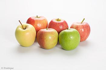 Diät, um Gewicht mit Rettich und Baumtomate in Englisch zu verlieren